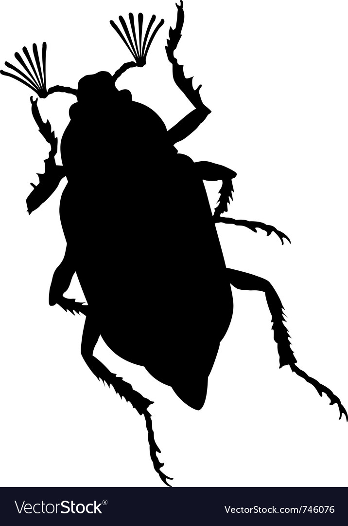 Maybug vector | Price: 1 Credit (USD $1)