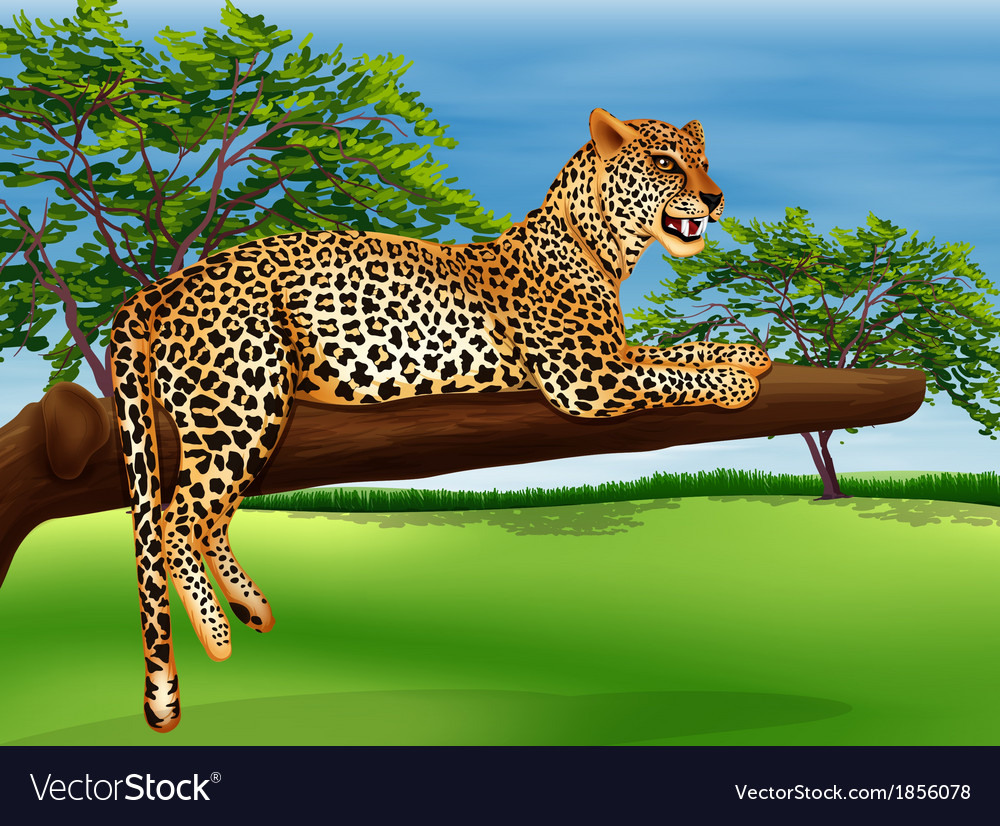 A leopard lying above the branch of a tree vector | Price: 3 Credit (USD $3)