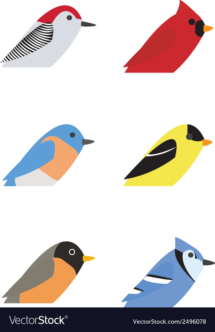 Various birds vector | Price: 1 Credit (USD $1)