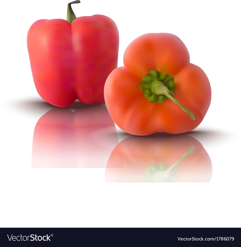 Red bell peppers vector | Price: 1 Credit (USD $1)