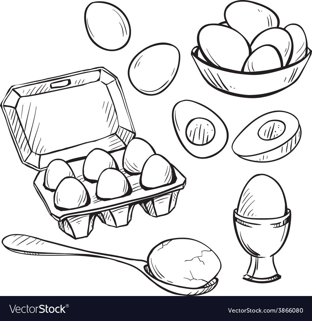 Set of eggs drawings vector | Price: 1 Credit (USD $1)