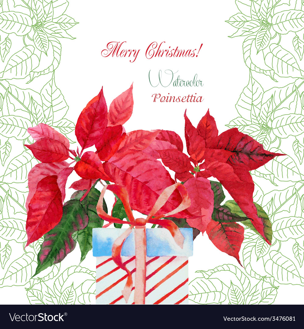Background with bouquet of red poinsettia and box vector | Price: 1 Credit (USD $1)
