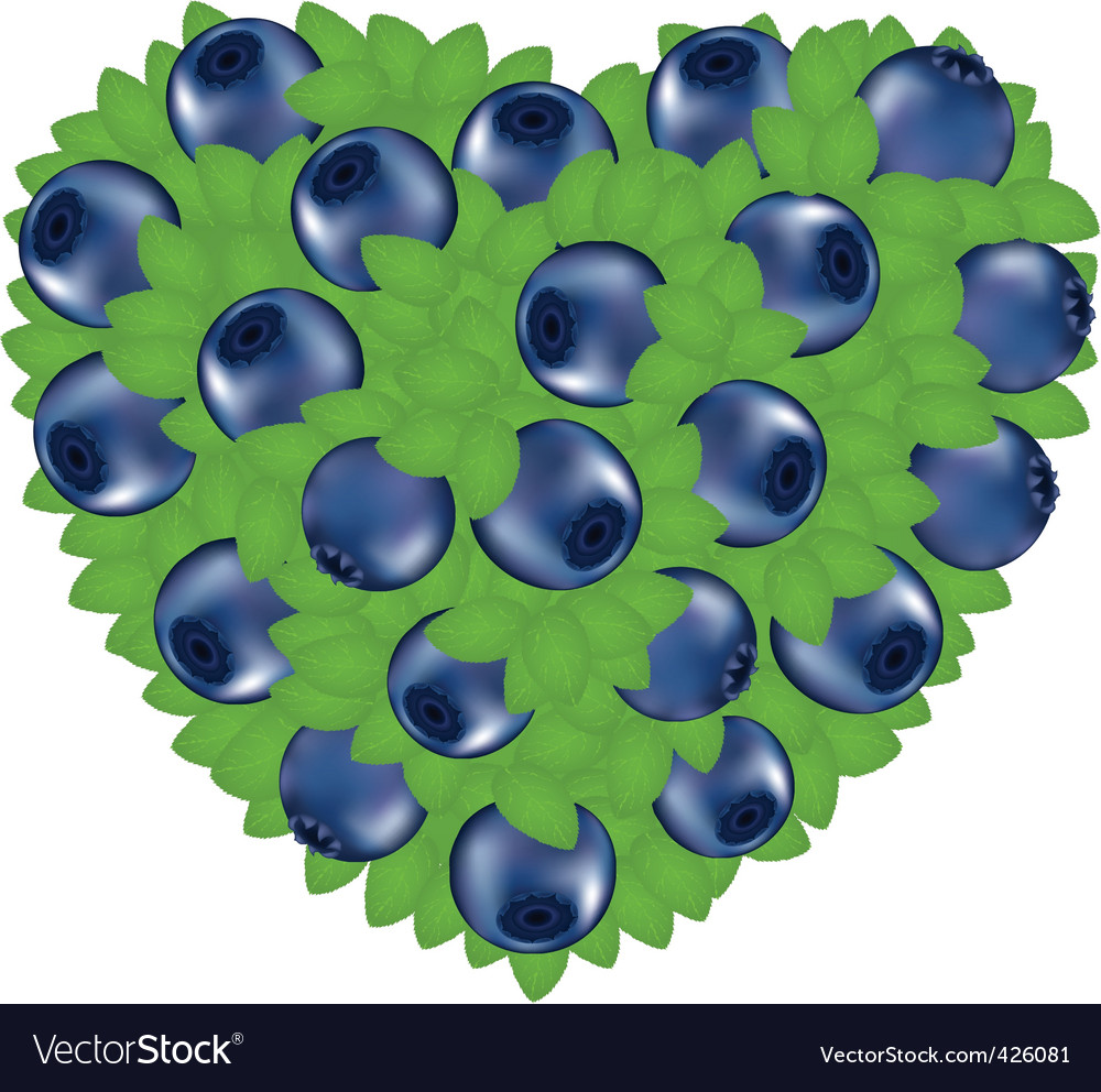 Heart from bilberry vector | Price: 1 Credit (USD $1)