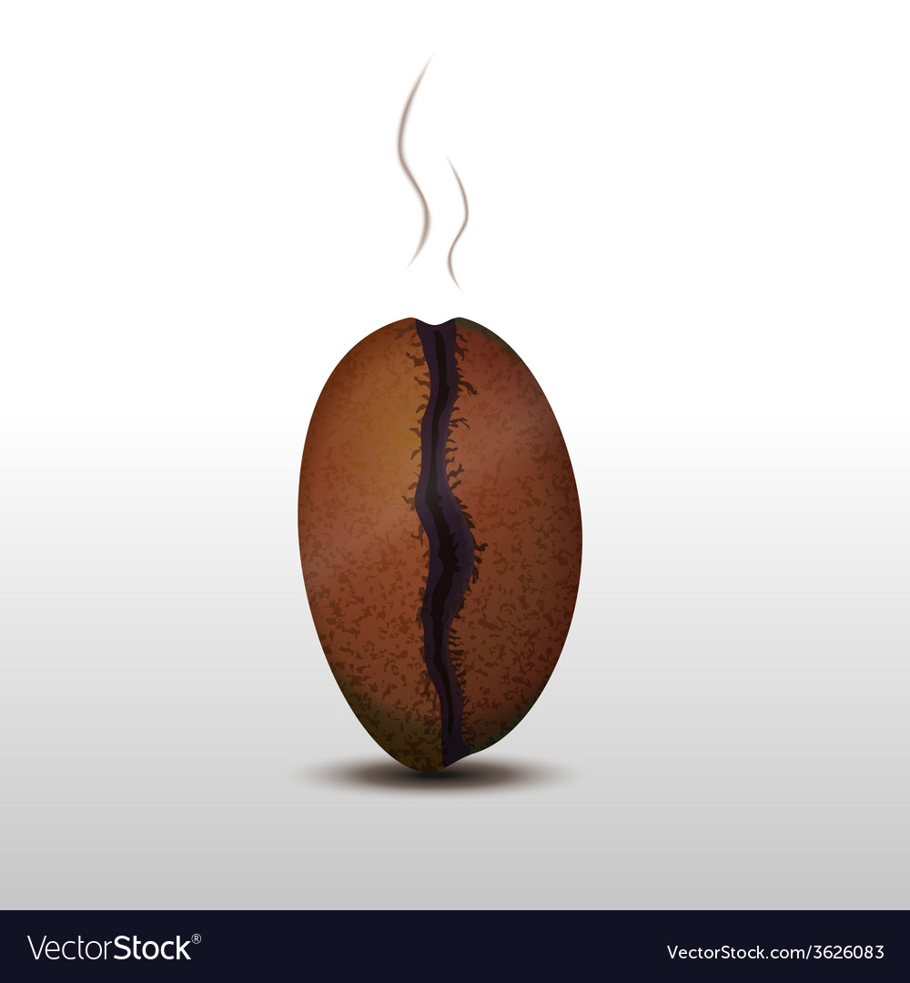 Photorealistic coffee bean with smoke isolated on vector | Price: 1 Credit (USD $1)
