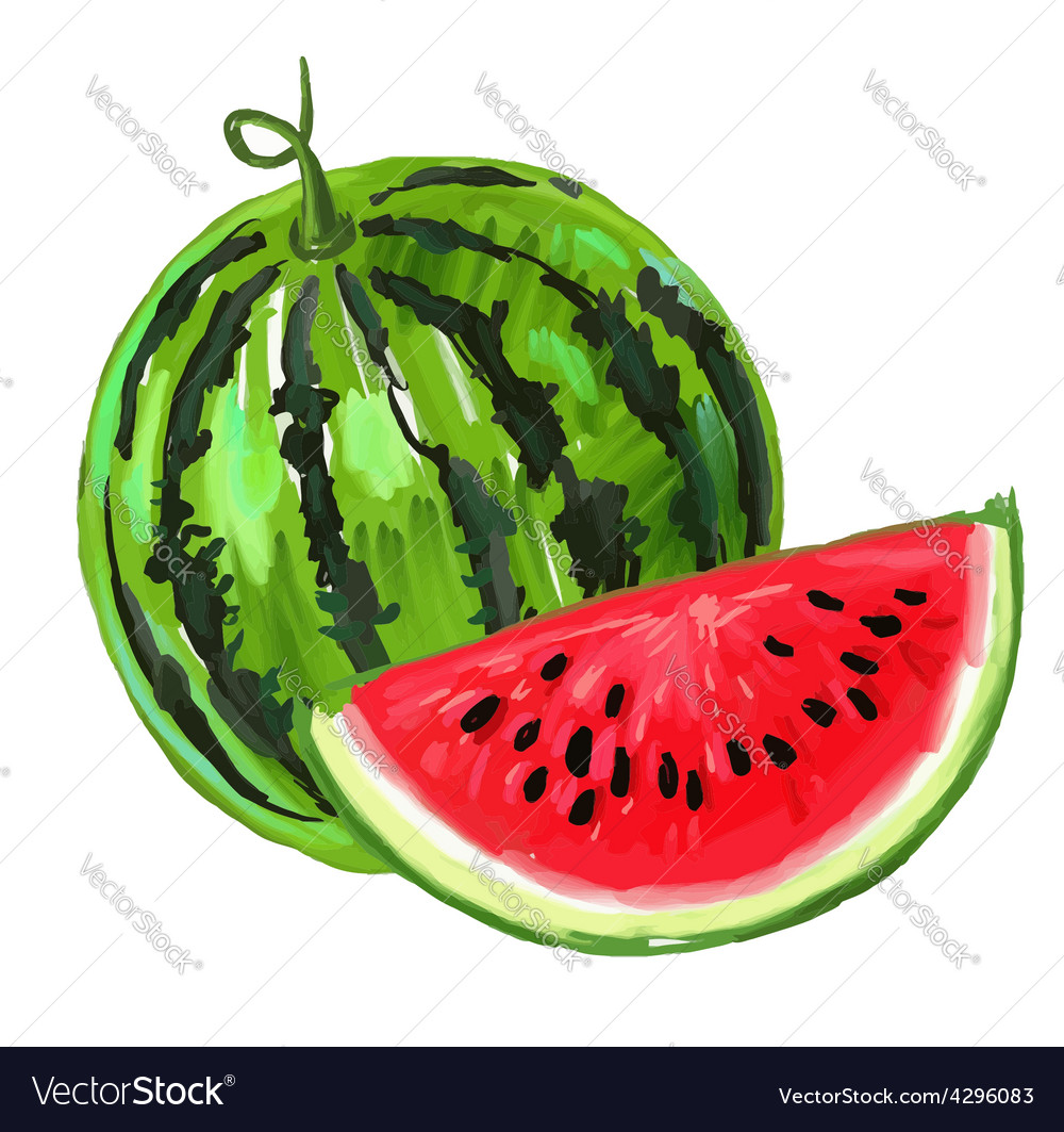 Picture of watermelon vector | Price: 3 Credit (USD $3)