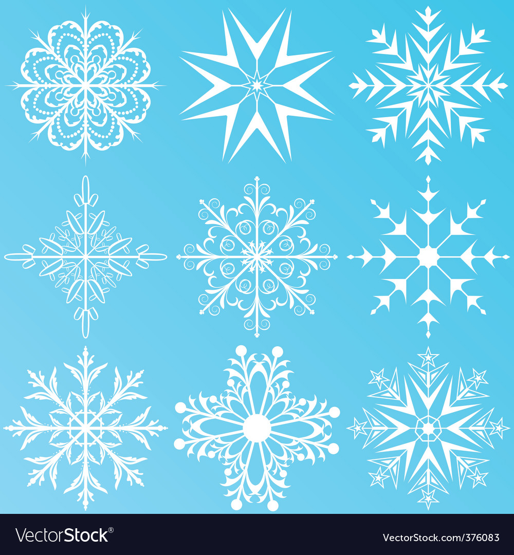 Set variation snowflakes isolated vector | Price: 1 Credit (USD $1)