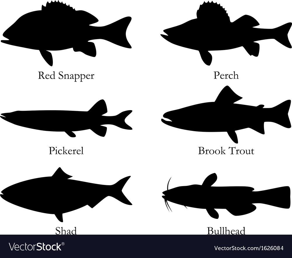 North american food fish vector | Price: 1 Credit (USD $1)