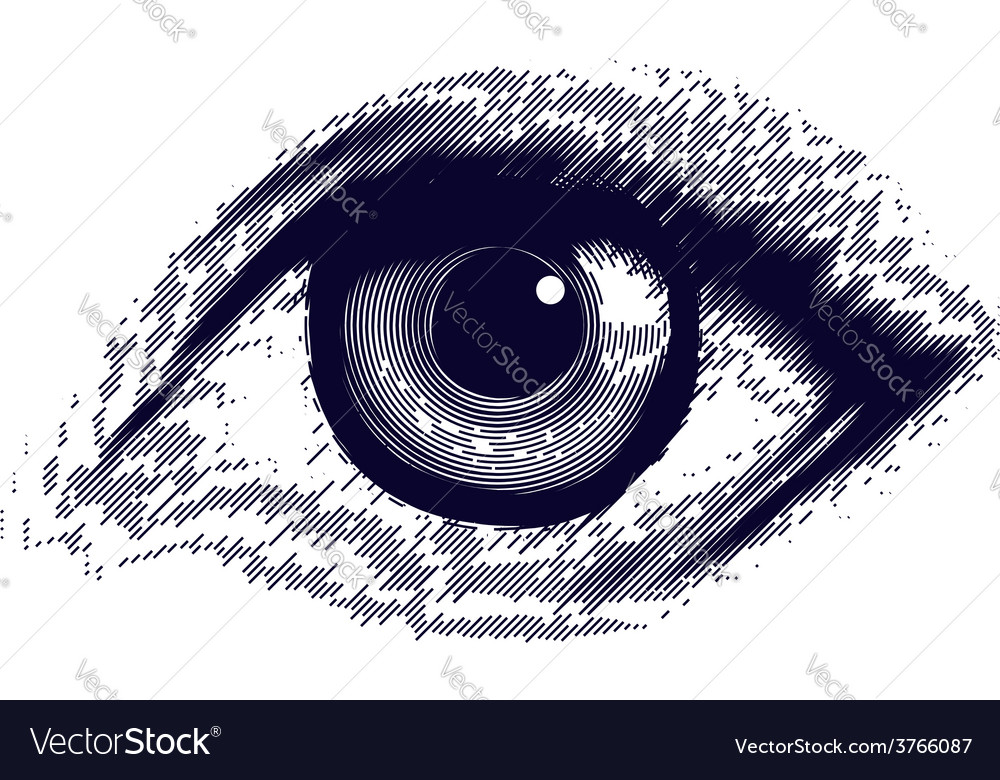Human etched eye vector | Price: 1 Credit (USD $1)
