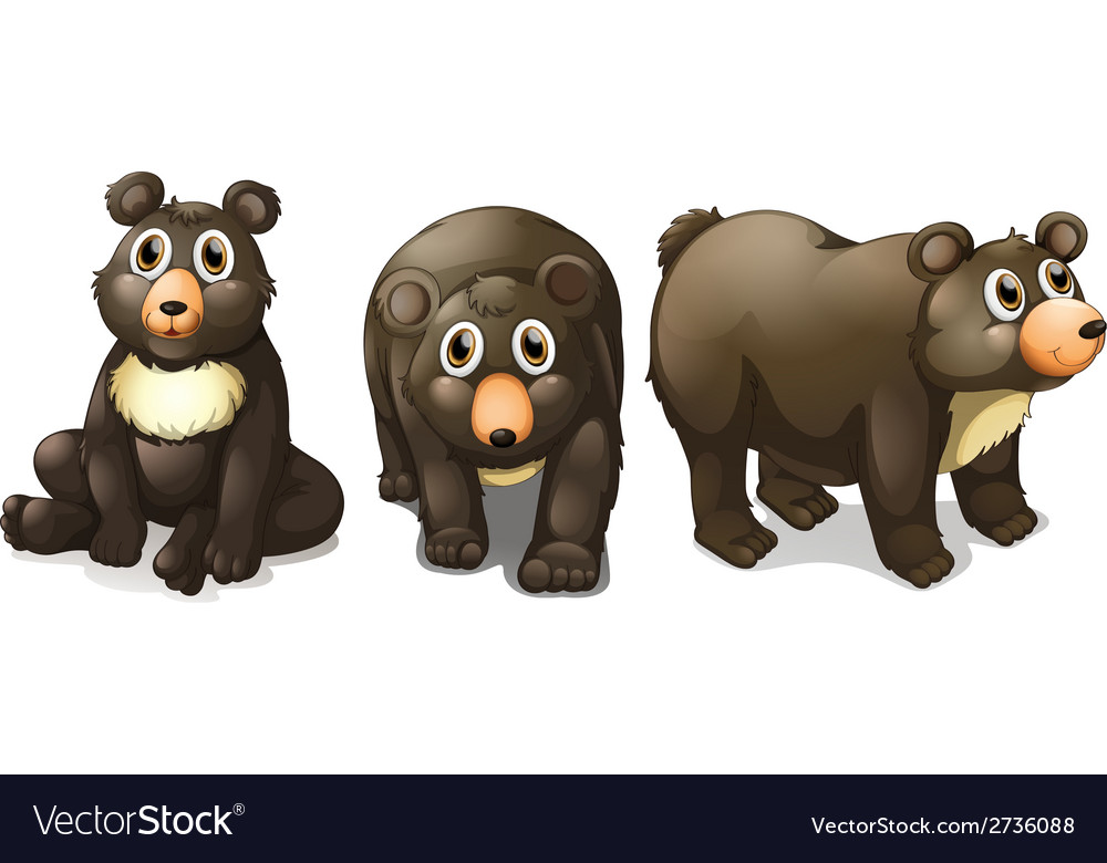 Black bears vector | Price: 1 Credit (USD $1)