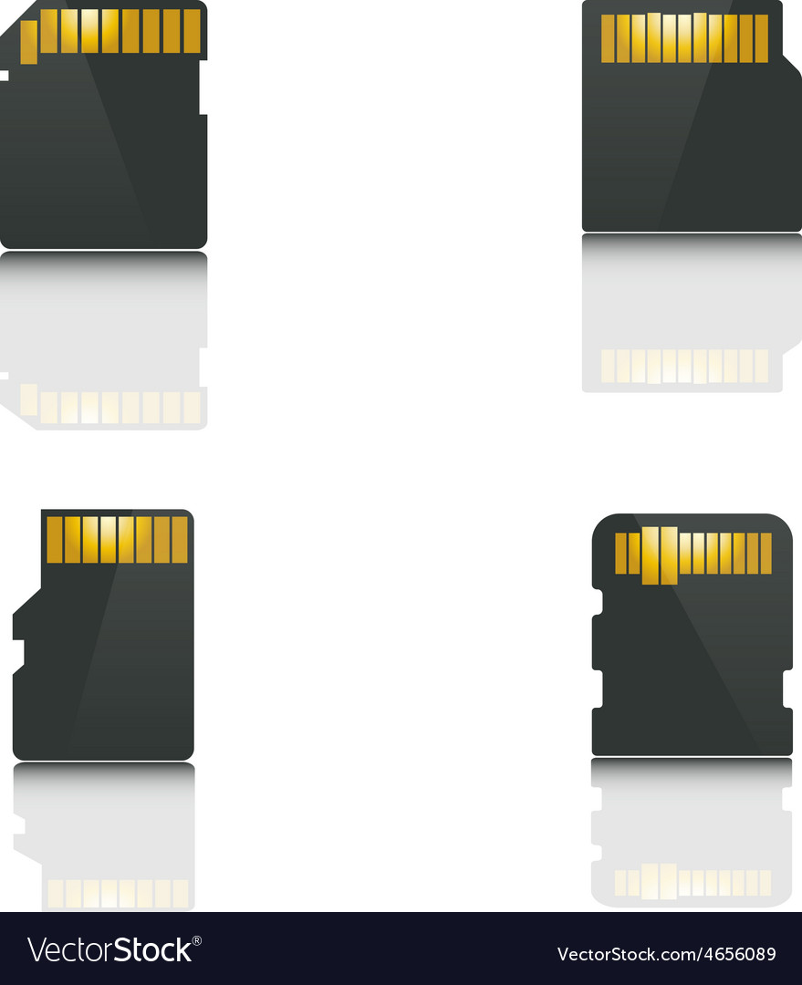 Set memory card vector | Price: 1 Credit (USD $1)