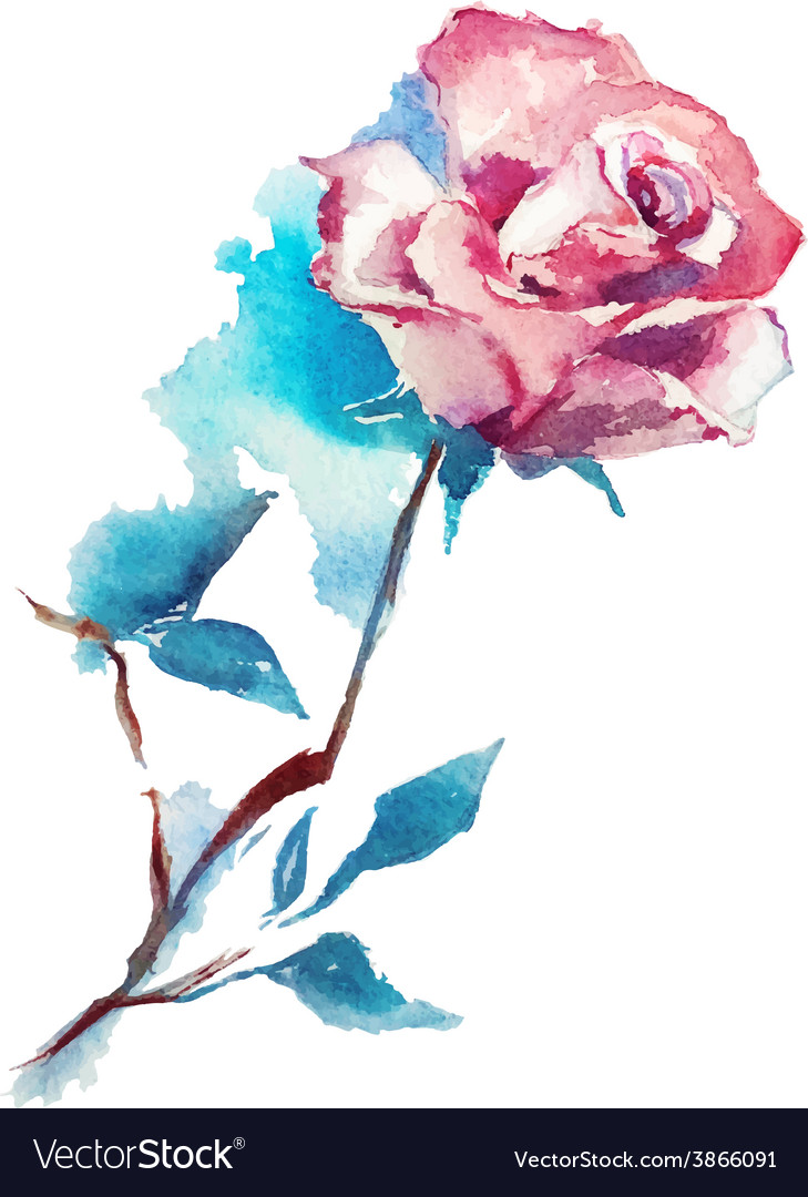 Rose watercolor sketch vector | Price: 1 Credit (USD $1)