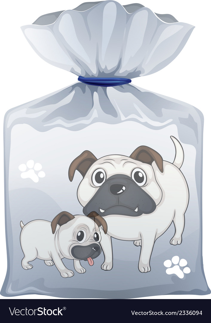 A plastic pouch with a picture of two cute dogs vector | Price: 1 Credit (USD $1)