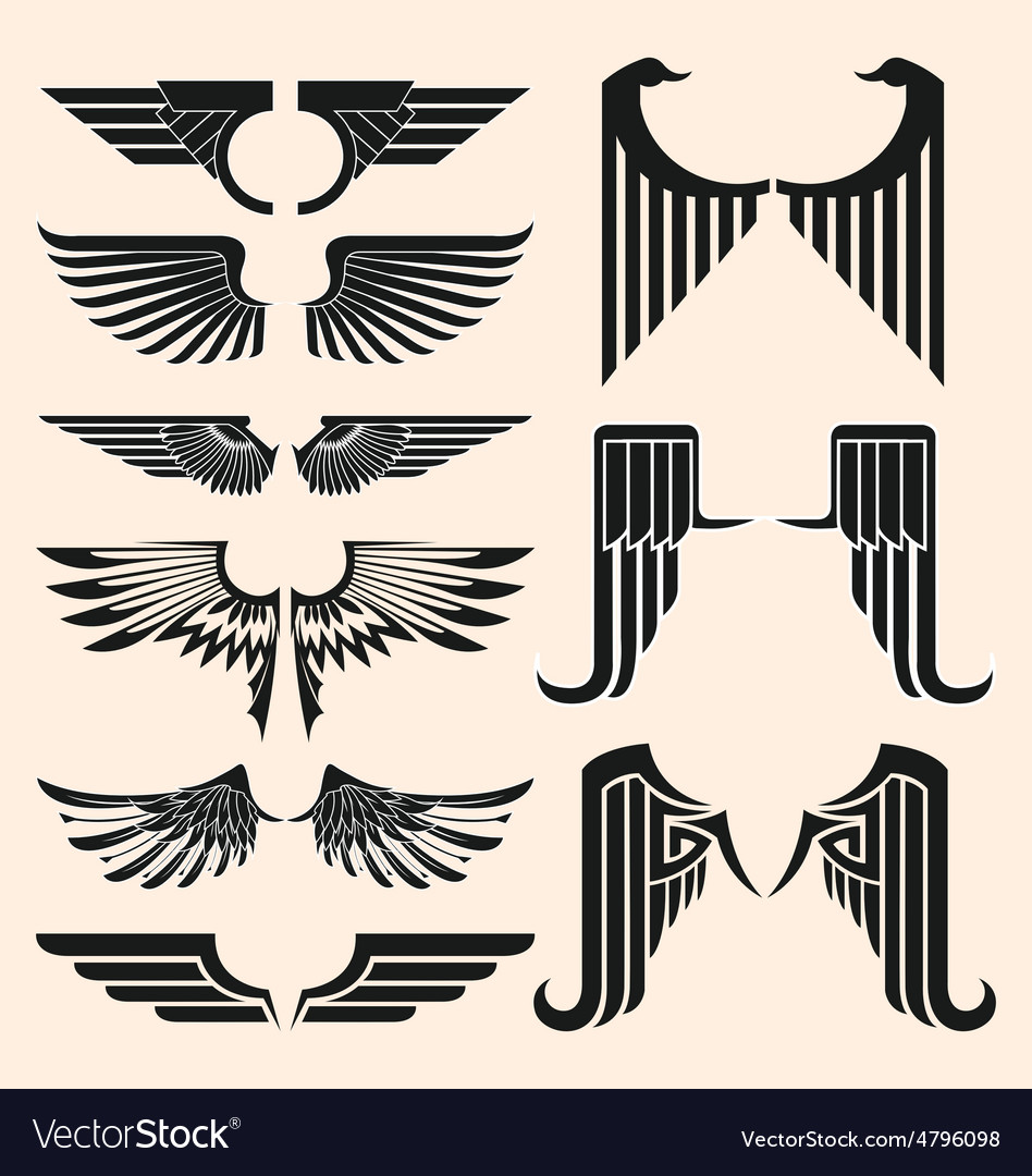 Wings tattoo vector