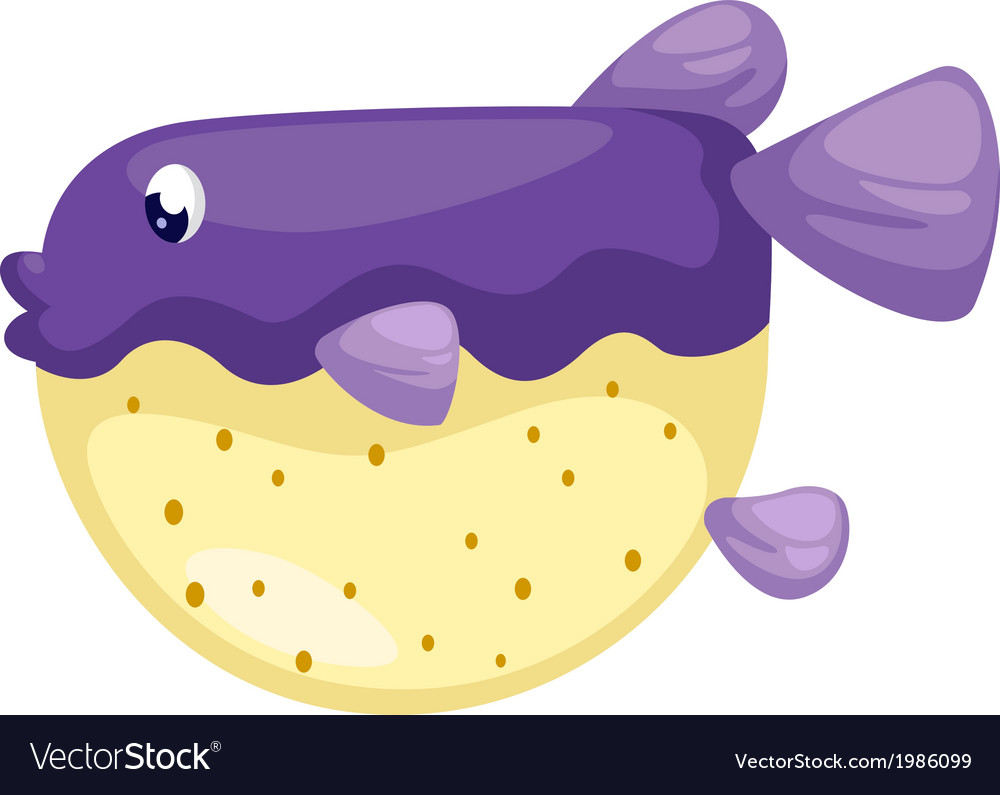 Isolated blowfish vector | Price: 1 Credit (USD $1)