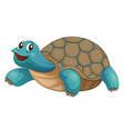 A turtle smiling vector