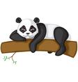 Big panda vector