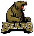 Big brown bear mascot vector