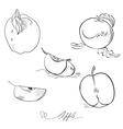 Sketch of apple vector