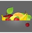 Set of fruits vector