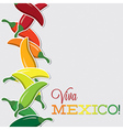 Viva mexico chilli card in format vector