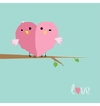 Two pink birds in shape of heart love cart flat vector