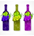 Bottle wine with grapes and vector