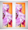 Set of cards with blossom orchid vector