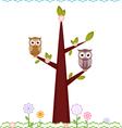 Owls on tree vector