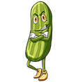 A cucumber vector