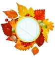 Autumnal round frame with fall leaf vector