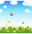 Flower meadow with butterflies vector