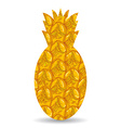 Pineapple peel silhouette of pineapple on a white vector
