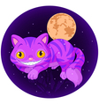 Magic cat vector