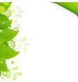 Eco background with green leaves vector