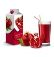 Pomegranate juice set vector