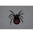 Black spider vector