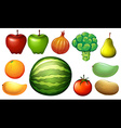 Nutritious foods vector