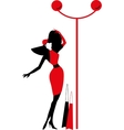 Graphic vintage women silhouettes vector