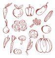 Sketch of vegetables vector