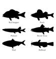North american food fish vector