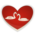 Valentines heart with swans vector