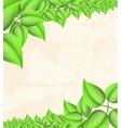 Floral leaves frame background vector
