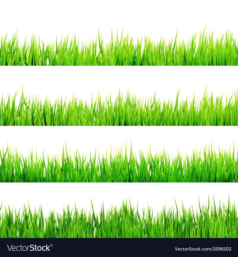 Fresh spring green grass isolated eps 10 vector   Price: 1 Credit (USD $1)