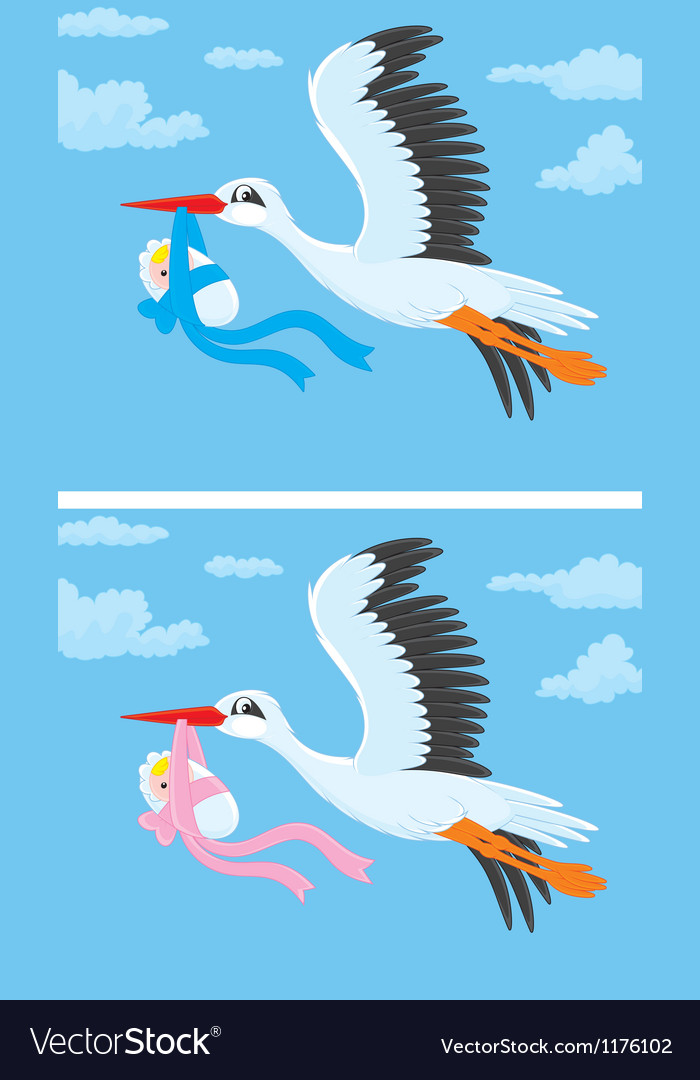 Stork with a newborn baby vector | Price: 3 Credit (USD $3)