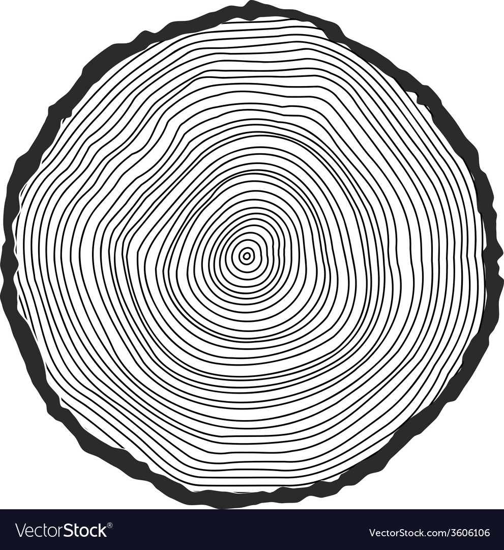 Conceptual background with tree-rings vector | Price: 1 Credit (USD $1)