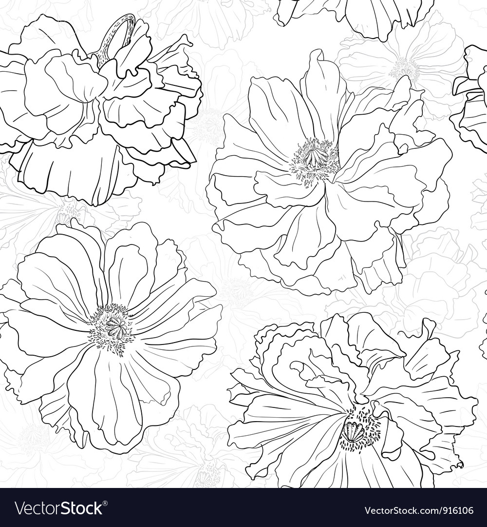 Hand drawn floral wallpaper with poppy flowers vector | Price: 1 Credit (USD $1)