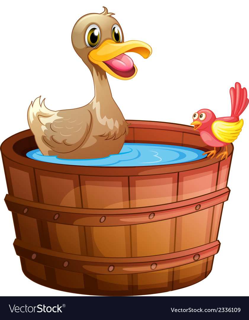 A duck and a bird taking a bath vector | Price: 1 Credit (USD $1)