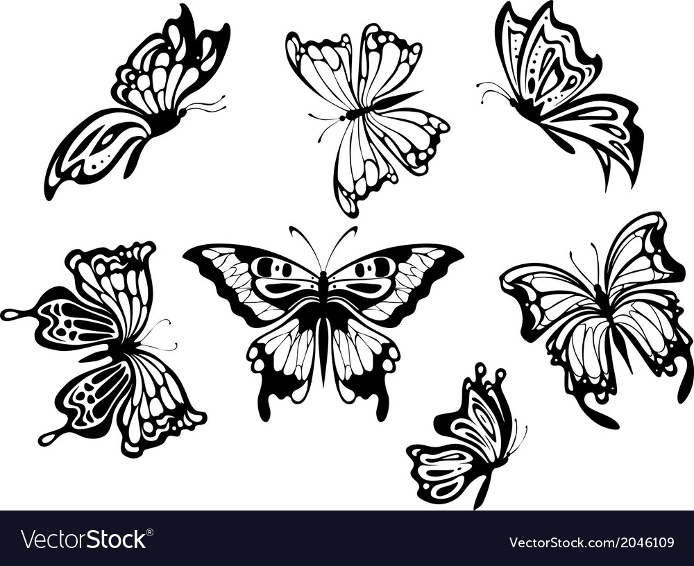 Beautiful butterflies vector | Price: 1 Credit (USD $1)