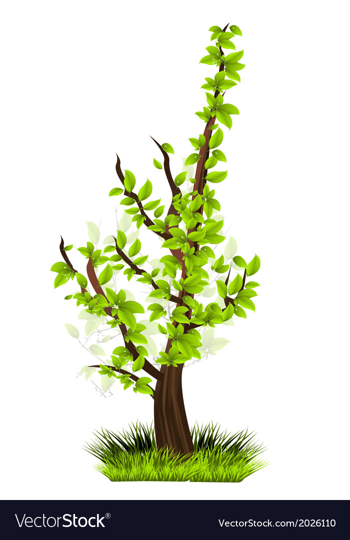 Small tree vector | Price: 1 Credit (USD $1)