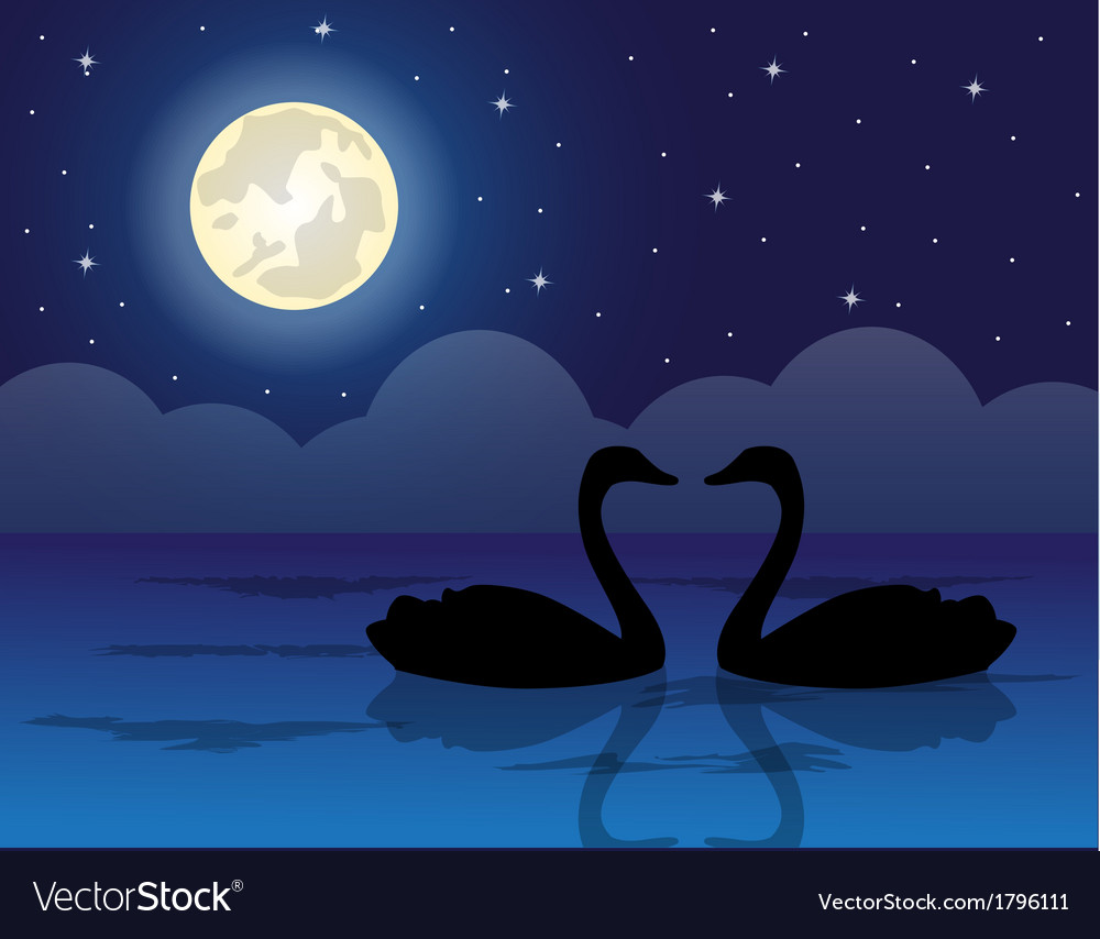 Pair of swans in a pond vector | Price: 1 Credit (USD $1)